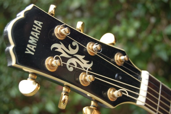 private guitar lessons in cambridgeshire guitar courses cambridge